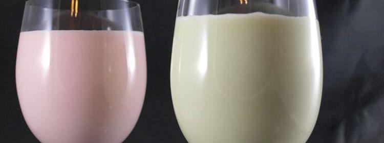 Shake Mixer + gutes Eiweißpulver: Eiweißshake selber machen